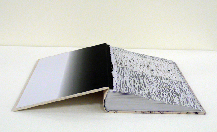 Buzz Spector, Efface Nabokov, 2014. Altered Book (edition of 5). Courtesy of Bruno David Gallery, St. Louis.